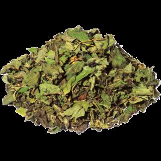 groene thee bio fruitig kruidig China gunpowder pepermunt Marrakesh nights premium thee BIO